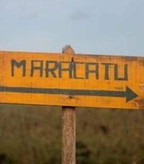 Be-a-ba_Final_MaracatuPorMayraFonseca_Mini