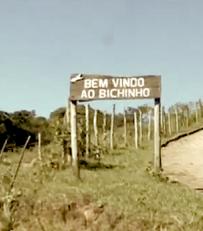DedodeProsa_OMapadaCachadaemBichinho_Mini