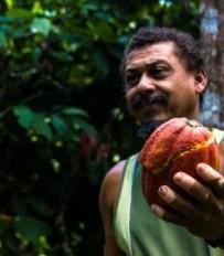 (Raimundo apresenta orgulhoso o cacau plantado por lá. Foto de Gustavo Cerqueira.)